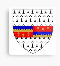 Coat of Arms of County Tipperary, Ireland Metal Print