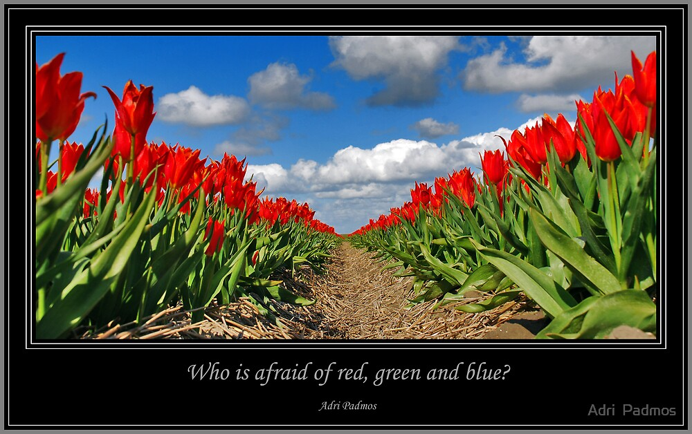 Who is afraid of red, green and blue? by Adri  Padmos