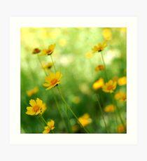 June Flowers Art Print