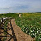 The path by annalisa bianchetti