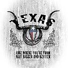 Texas3 by Shawn Swain