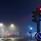 Lights in the Mist by eXparte-se