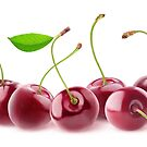Cherries in a row by 6hands