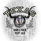 Texas9 by Shawn Swain