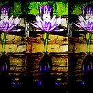 3 dark lillies by sadeyedartist