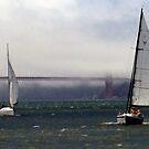 San Francisco, Golden Gate, yachts by Igor Pozdnyakov