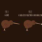 Know Your Birds II by Teo Zirinis