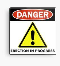 Danger - Funny Sign Metal Print