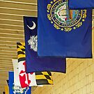 U.S. State Flags by Tamara Valjean