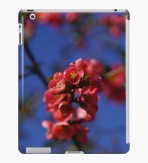 Tree blossom iPad Case/Skin