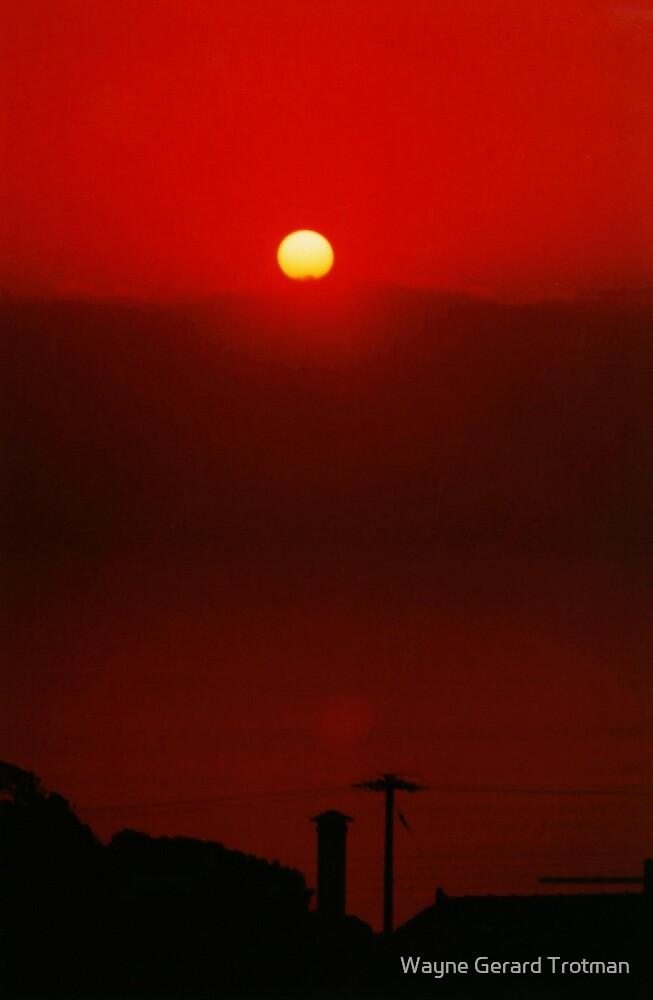 Under a Blood Red Sky by Wayne Gerard Trotman