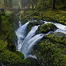 Sol Duc Falls, Olympic national park, Washington by Zane Paxton