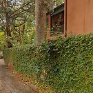 Garden Wall  by John  Kapusta