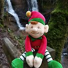 Eddie The Elf At The Witches Pools by Heidi Stewart