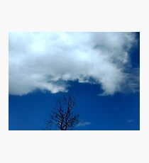 Cloud and Tree Photographic Print