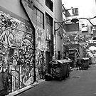 Melbourne alley by Geoff White