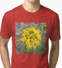 Ants Feasting On Yellow Flower Nectar  Tri-blend T-Shirt