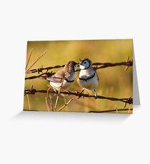 Love Birds Greeting Card