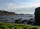 on the rocks... Bicheno by mark7b
