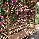 Rose Arbor by DesignsByDeb