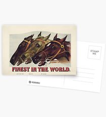 Finest in the World - Vintage Horse Racing Print Postcards