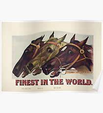 Finest in the World - Vintage Horse Racing Print Poster