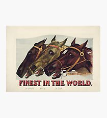 Finest in the World - Vintage Horse Racing Print Photographic Print