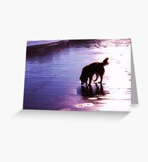 saz silhouette on the sands Greeting Card