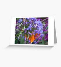 Togetherness: Dedicated to David Parkin Greeting Card
