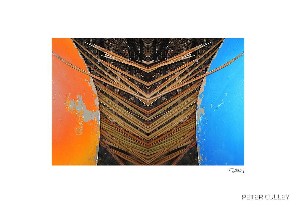 Tiki Canoe • Makawayan by PETER CULLEY