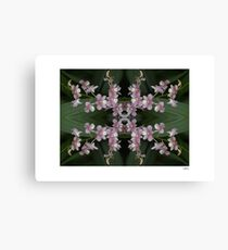 Orchid Quadro 0001 • Singapore Botanical Gardens Canvas Print