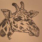 Giraffe Junior by KarenJI1962