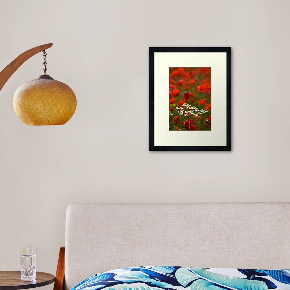 Poppies and Daises Framed Art Print