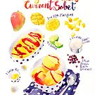 Mango and Black Currant Sorbet by ploveprints