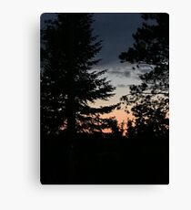 Red White and Blue Sunset Through Trees Canvas Print