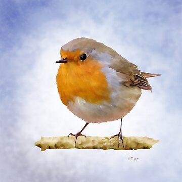 Bird: Adult Red Robin by bamalam-art