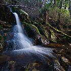 Spectacular Tasmanian Falls by bazcelt