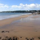 The Beach at Wiseman's Bridge, Amroth, Wales by trish725