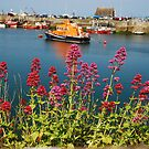 Lifeboat through the wildflowers by Nancy Huenergardt