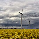 Wind Power by Chris Tait