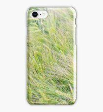 Green Barley Closeup iPhone Case/Skin