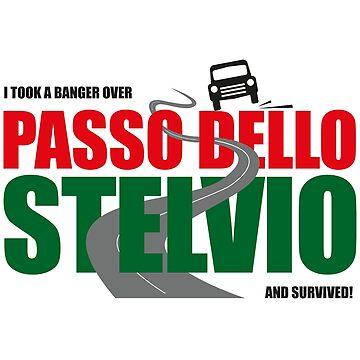 Banger Rally Stelvio Pass survivor! by Kirwindesign