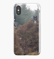 Wolf dogs iPhone Case