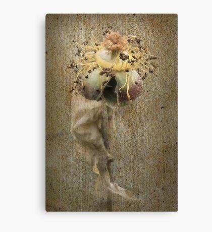 Rust 'n Roses ~ #4 Canvas Print
