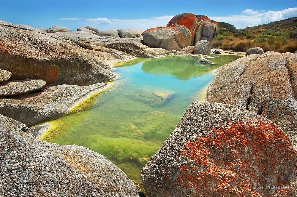 Rockpool #3 by Peter Hammer