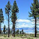 A Glimpse Of Mono Lake by marilyn diaz