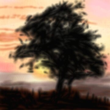Sunset tree by thebigG2005