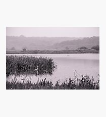 Leighton Moss - A View Photographic Print