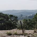 North from Henley Road Kangaroo Ground Victoria 20180425 2563  by Fred Mitchell