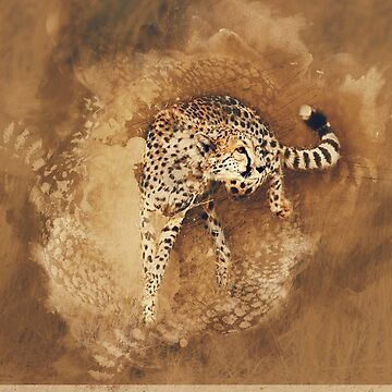 Cheetah in the Grass by Frogvision